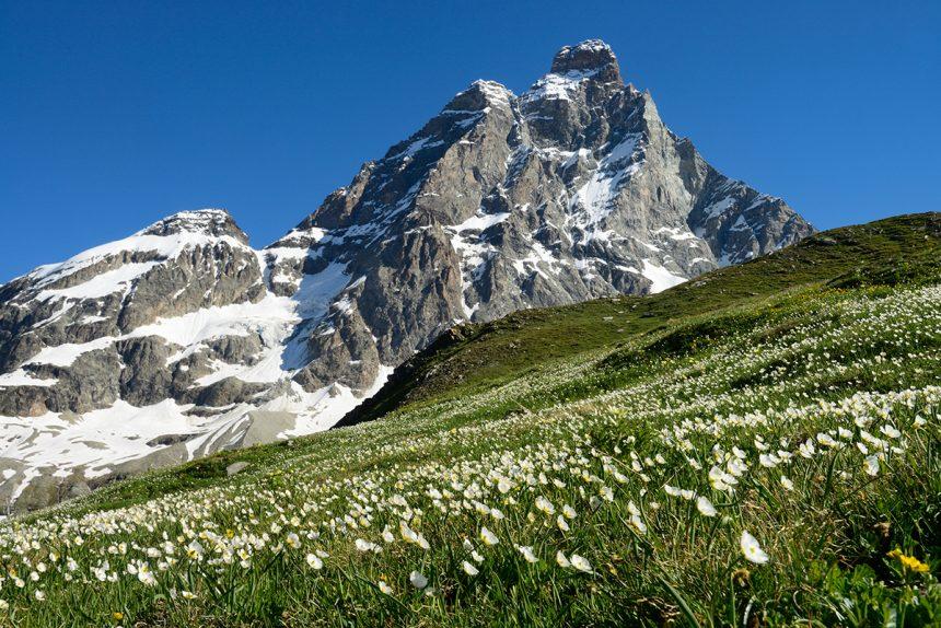 Escursioni in montagna: tutti i consigli per fare trekking in sicurezza